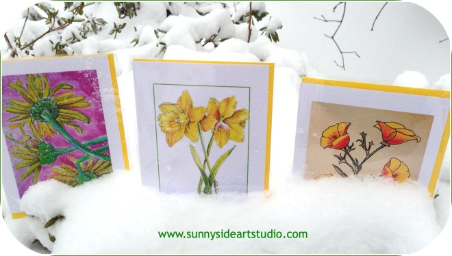 signs-of-spring-sunnyside-3-greeting-cards-pm